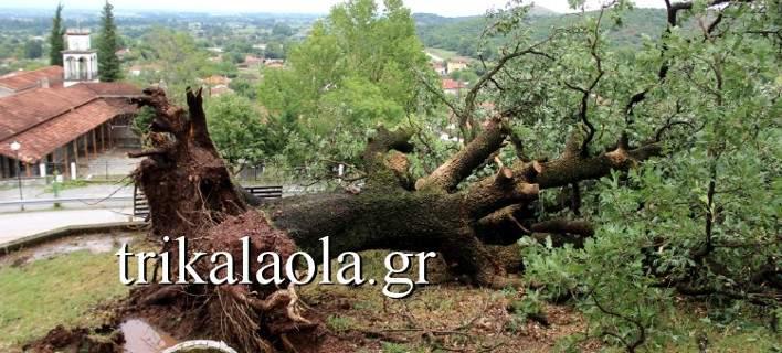 Ανεμοστρόβιλος σάρωσε τα Τρίκαλα. Αέρας και σφοδρή χαλαζόπτωση ξερίζωσαν δένδρα [εικόνες-βίντεο]