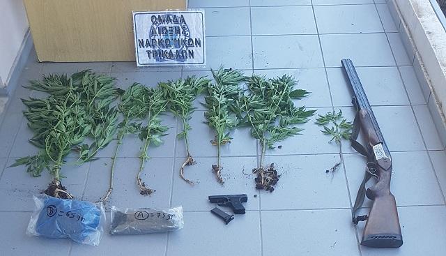 53χρονος καλλιεργούσε κάνναβη στο αγρόκτημά του