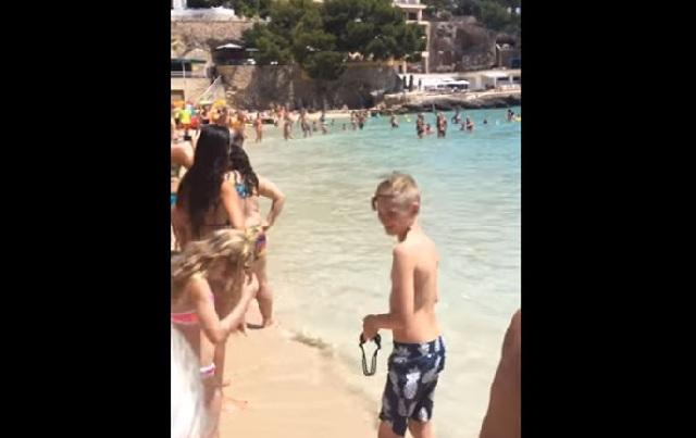 Καρχαρίας βγήκε στην στεριά σε παραλία της Μαγιόρκα