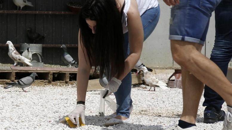 Έρευνες για την σφαίρα που καρφώθηκε σε τοίχο πάνω από 14χρονη στο Μενίδι
