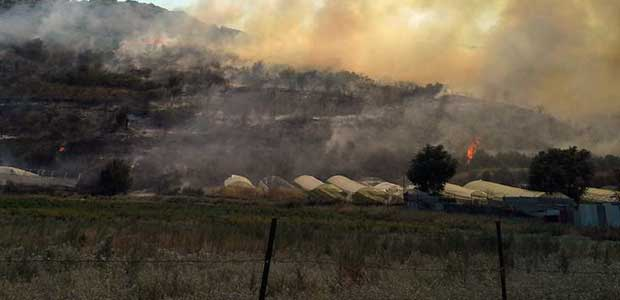 Μεγάλη πυρκαγιά μεταξύ Σέσκλου και Διμηνίου απείλησε κατοικίες