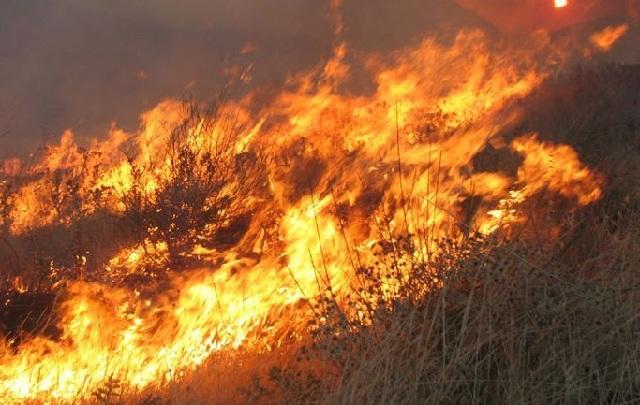 Μαίνονται οι πυρκαγιές σε Ζάκυνθο και Μεσσηνία