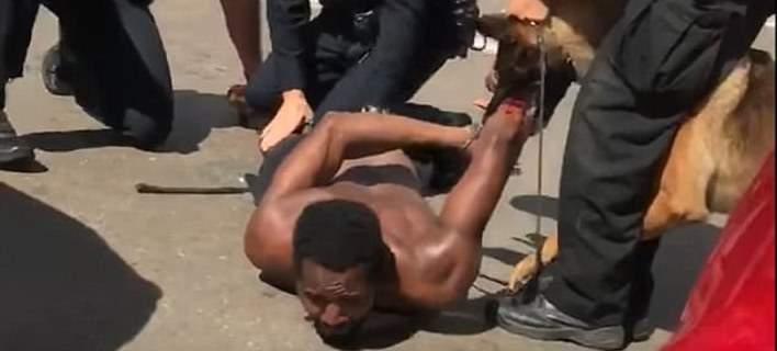 Αστυνομικοί αφήνουν σκύλο Κ9 να δαγκώσει ανελέητα ύποπτο