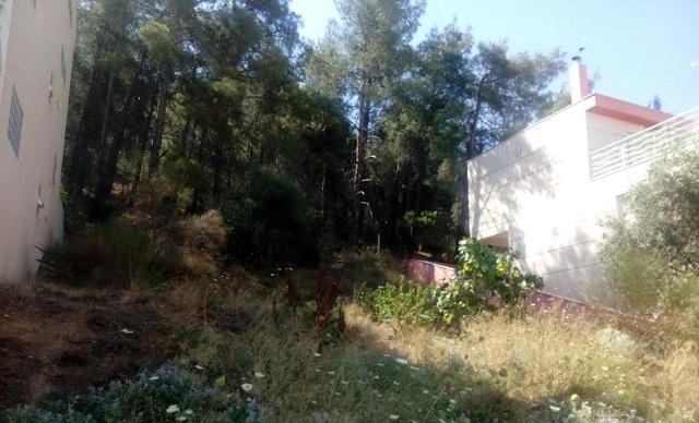 Αντιπυρική ζώνη για την προστασία κατοικιών κάτω από τον λόφο της Γορίτσας