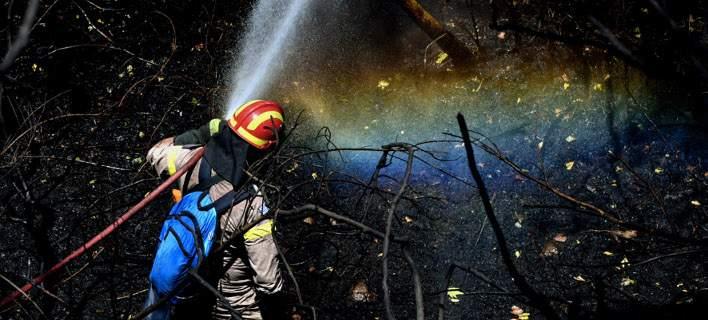 Ολονύχτια μάχη με την πυρκαγιά στη Λευκίμη Σουφλίου [εικόνες -βίντεο]
