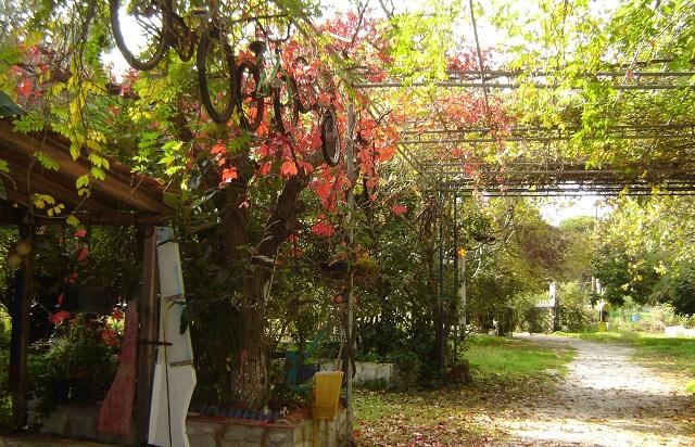 Camping Κουκουναριές: Επιστροφή στον... παράδεισο