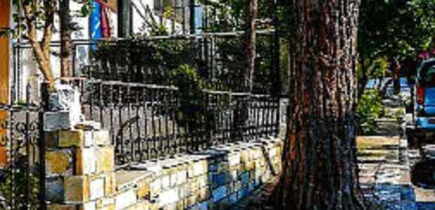 Δέντρο- οδόφραγμα…για απορριμματοφόρα