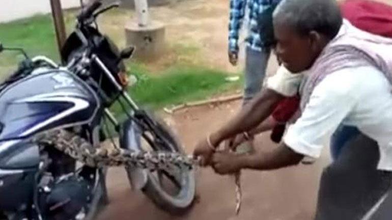 Απίστευτη μάχη μοτοσικλετιστή με πύθωνα που κρύφτηκε στη μηχανή του(vid)