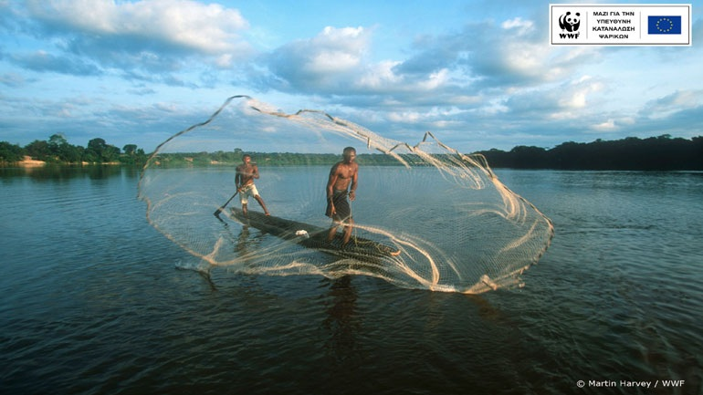 WWF: Το 66% των ψαρικών που καταναλώνουν οι Έλληνες είναι εισαγόμενα