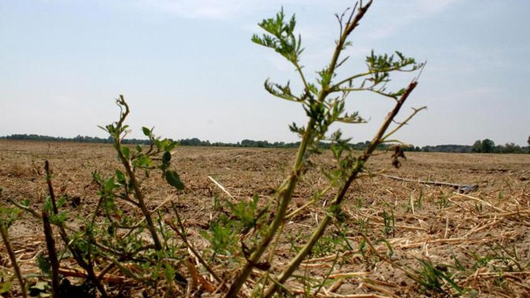 Μεγάλο πρόβλημα λειψυδρίας αντιμετωπίζει η Ιταλία
