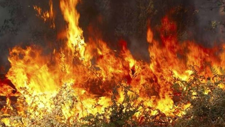 Καίγεται δάσος στις Βολίμες Ζακύνθου