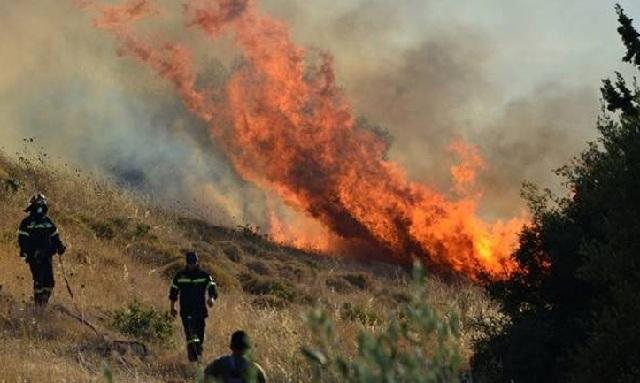 Στις 49 οι δασικές πυρκαγιές σε μόλις 24 ώρες. Υψηλός παραμένει ο κίνδυνος