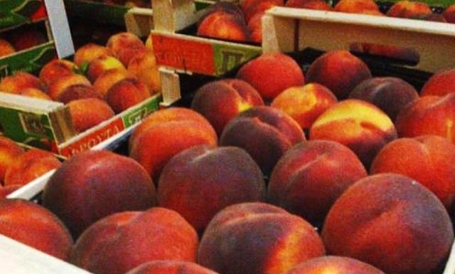 Δέσμευση φορτίου 5 τόνων φρούτων στον Πειραιά