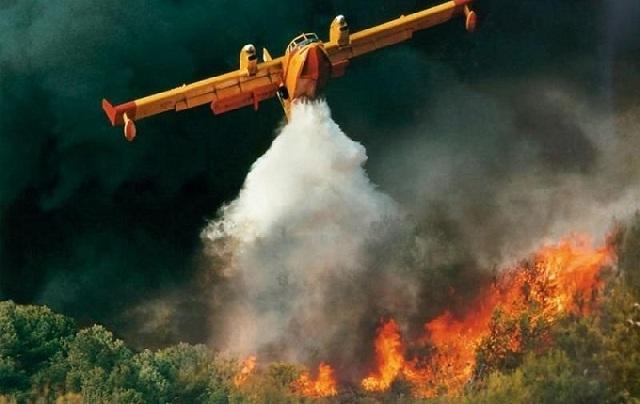 Μεγάλη πυρκαγιά στο Δίλοφο Φαρσάλων. 4 αεροσκάφη επιχειρούν για την κατάσβεσή της