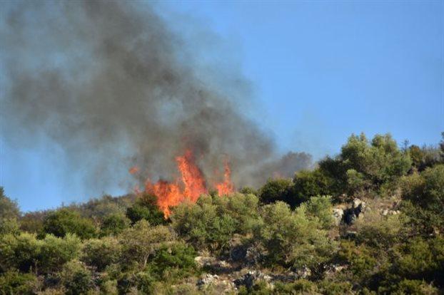 Σε ύφεση αλλά όχι υπό έλεγχο η πυρκαγιά στο Δίλοφο Φαρσάλων
