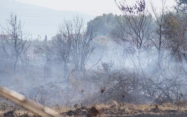 Πέρασαν στην Ελλάδα οι φωτιές από την Αλβανία