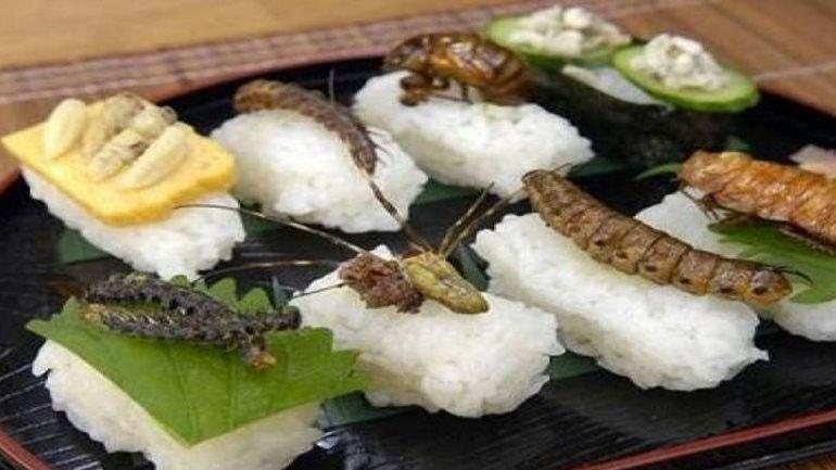 Ελβετία: Τρόφιμα από έντομα θα διατίθενται στα σουπερμάρκετ