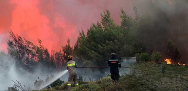 Ολονύχτια μάχη με τις φλόγες: Μεγάλες αναζωπυρώσεις σε Κάλαμο και Καπανδρίτι