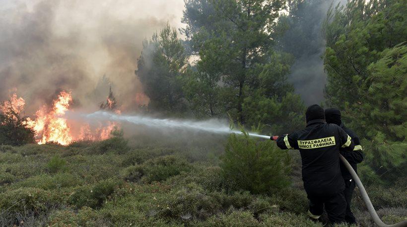 Κόρινθος: Υπό έλεγχο η φωτιά στην περιοχή Παναρίτι Ξυλοκάστρου