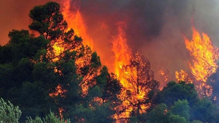 Σε ύφεση η φωτιά στην Κούμπερι Αχαΐας