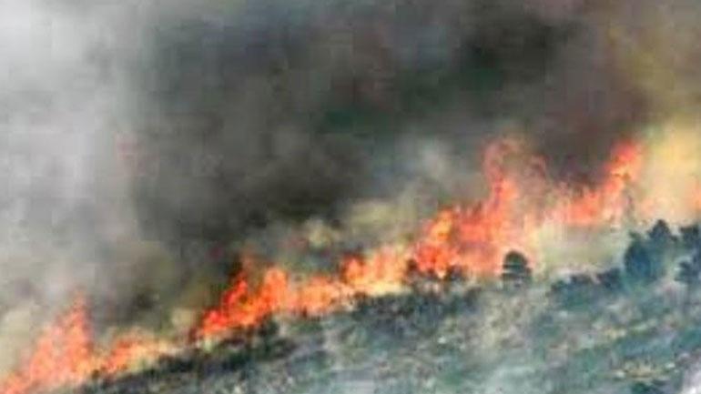 Λάρισα: Μικρής έκτασης πυρκαγιά στο Κόκκινο Νερό