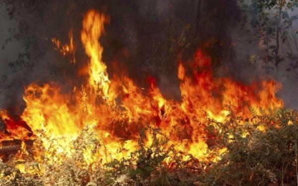 Λήψη καταθέσεων για τη φωτιά στην Ανάβρα