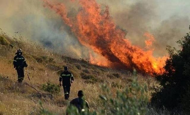 Τρίκαλα: Υπό έλεγχο η πυρκαγιά στα Ανταλλάξιμα