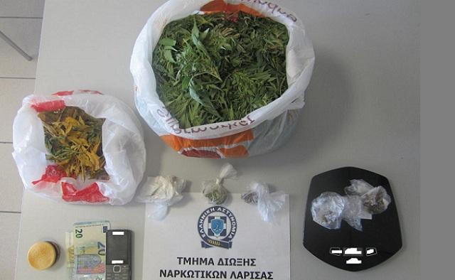 Συνελήφθη 47χρονος για καλλιέργεια και κατοχή κάνναβης