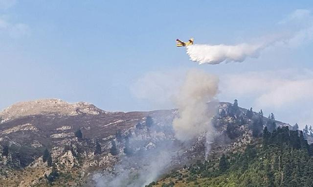 Σε εξέλιξη φωτιά κοντά στην Ιερά Μονή Σέλτσου στην Άρτα