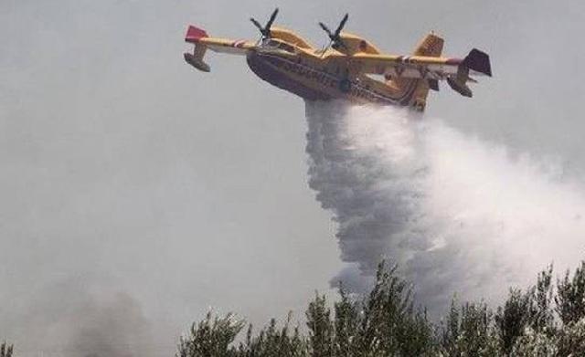 Τεράστια οικολογική καταστροφή στη Ζάκυνθο σύμφωνα με τον δήμαρχο