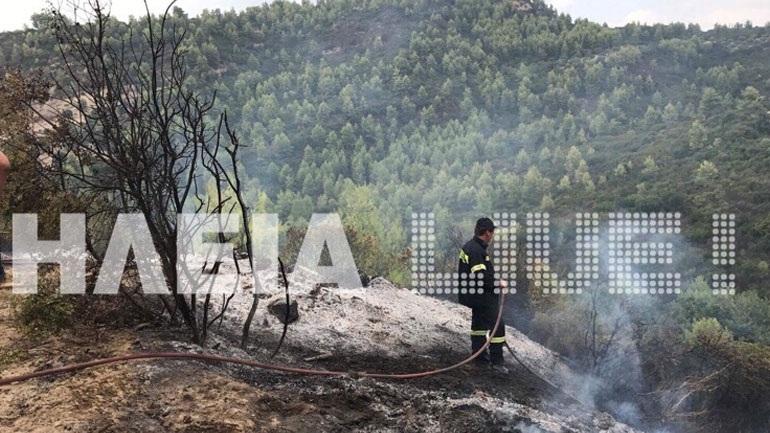 Ηλεία: Υπό μερικό έλεγχο η πυρκαγιά στα Λυμπεραίϊκα Ήλιδας