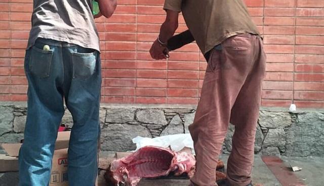 Εικόνες σοκ στη Βενεζουέλα: Πολίτες σφάζουν σκυλιά στον δρόμο για να τα φάνε