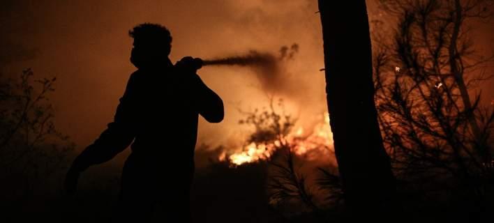 Σε ύφεση οι φωτιές, σε τρία διαφορετικά σημεία, στο νομό Λάρισας