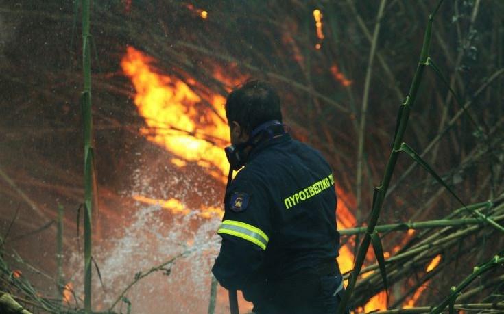 Νέα μεγάλη φωτιά στα Φάρσαλα – Καίγεται χορτολιβαδική έκταση