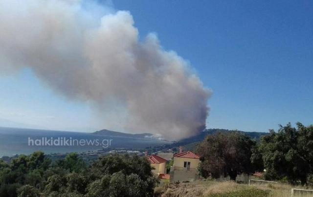 Στις αυλές των σπιτιών φτάνει η φωτιά της Χαλκιδικής. Νέα φωτιά στις Σέρρες [βίντεο]