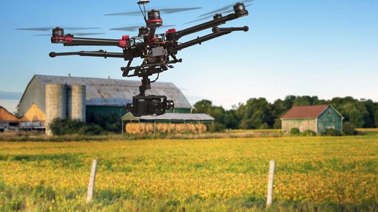 Το πρώτο ρομποτικό αγρόκτημα όπου όλα γίνονται αυτόματα χωρίς ανθρώπινο χέρι