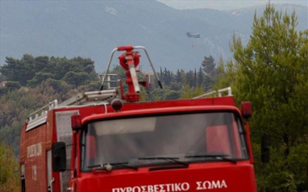 Φωτιά στον Τύρναβο έκαψε ολοσχερώς καφενείο