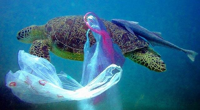 Ενημερωτική εκδήλωση για την σταδιακή κατάργηση της πλαστικής σακούλας