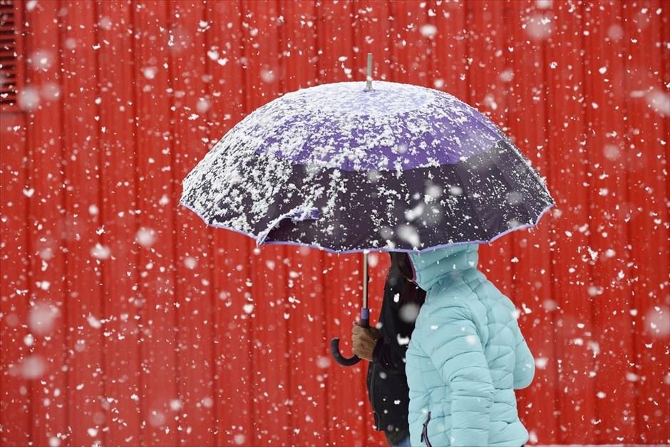 Το πρώτο χιόνι στο Πήλιο
