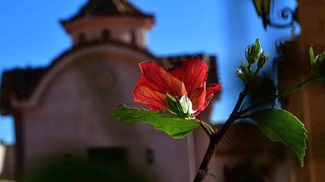 Οριστική πλέον η ανέγερση του πρώτου ελληνορθόδοξου μοναστηριού στην Αυστρία