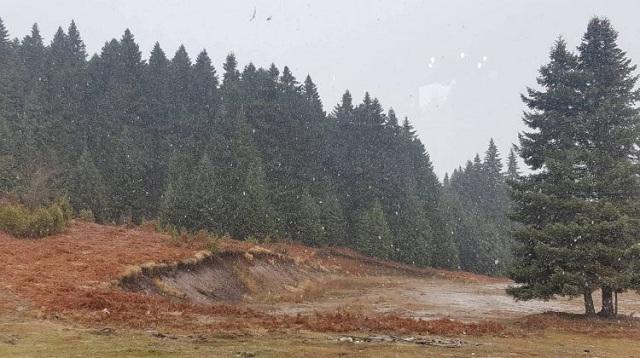 Χιονίζει στα ορεινά των Τρικάλων [εικόνες]
