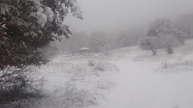 Χιονίζει σε Κοζάνη, Καστοριά, Φλώρινα και Γρεβενά. Μαγικά τοπία στα λευκά [βίντεο]