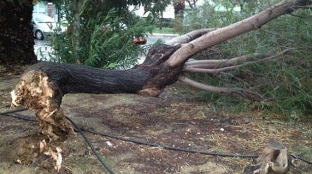Προβλήματα σε Μαγνησία και Σποράδες από τους ισχυρούς ανέμους