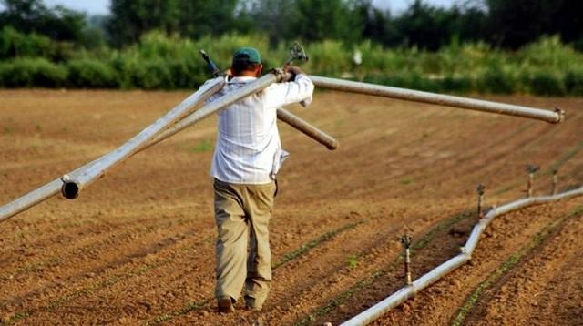 Λήγει σήμερα η προθεσμία ένταξης των αγροτών στο κανονικό καθεστώς ΦΠΑ