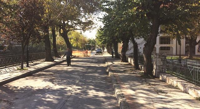 Παρέμβαση των «Πρασίνων» για το έργο της Καραμπατζάκη