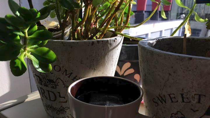 Το καυτό τσάι αυξάνει τον κίνδυνο καρκίνου του οισοφάγου για όσους πίνουν και καπνίζουν