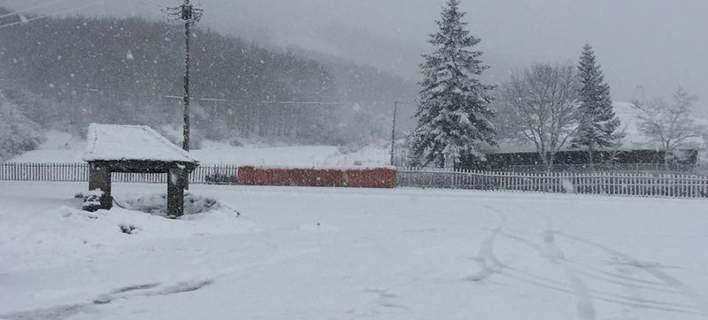 Σφοδρή χιονόπτωση στην Ηπειρο: Το έστρωσε στο Μέτσοβο και τα Τζουμέρκα [εικόνες]