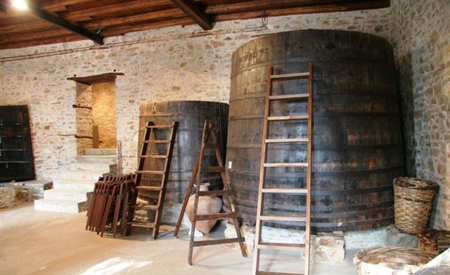 Το Μουσείο Ελιάς για πρώτη φορά στην πόλη του Βόλου