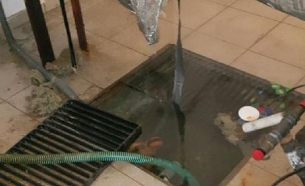 Αποκαλύφθηκε... ανάβρα στο υπόγειο του δημοτικού σχολείου Καλών Νερών