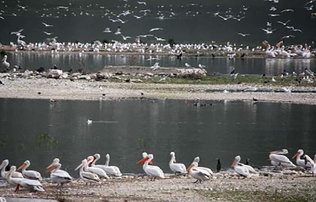 Ημερίδα για την λίμνη Κάρλα